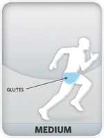 Glutes and quadriceps