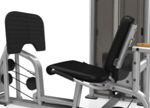 Leg Press/Calf Extension C010ES