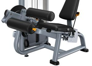 Seated Leg Curl DSL0619