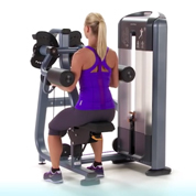 Precor Selectorized Lateral Raise