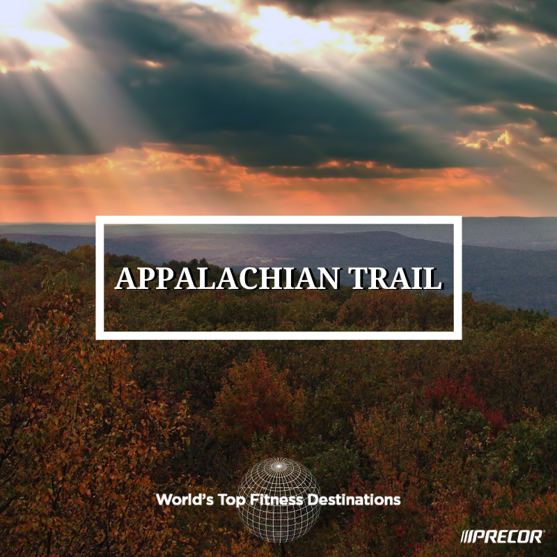 Appalachian Trail fitness destination. Photo courtesy of Flickr user Nicholas A. Tonelli.