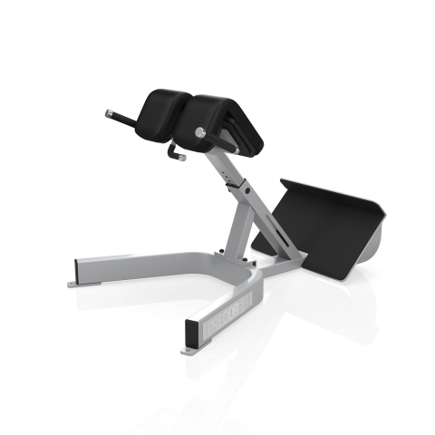 Precor Back Extension 312