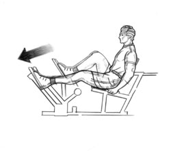 Description Http Precor Com Images Wrk Str Legpress Jpg
